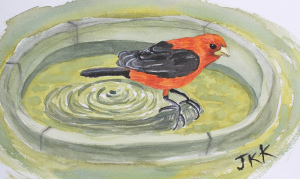 scarlet-tanager-watercolor-completed