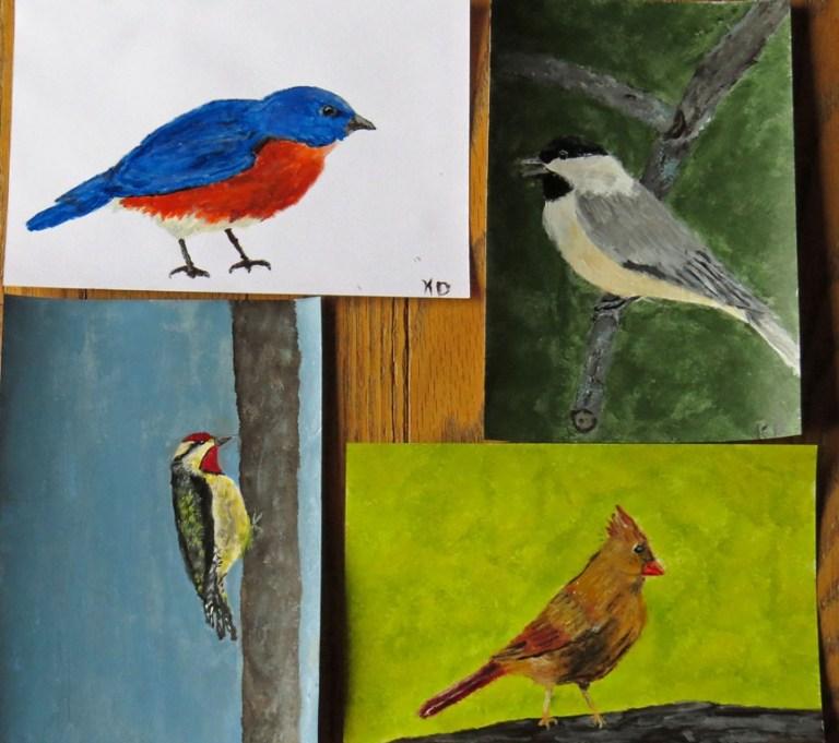draw-a-bird